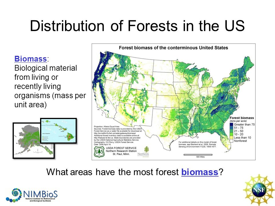 Distribution of Forests in the US Biomass: Biological material from living or recently living organisms (mass per unit area) What areas have the most