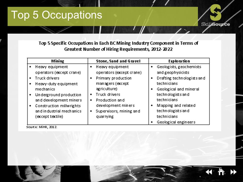 Top 5 Occupations