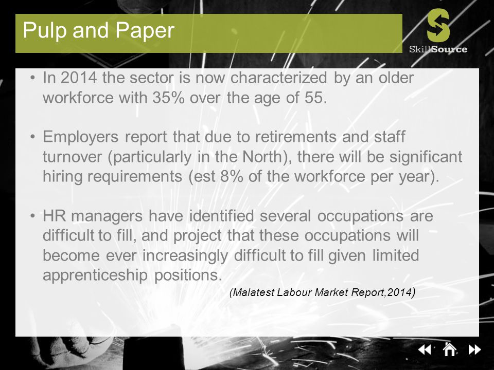 Pulp and Paper In 2014 the sector is now characterized by an older workforce with 35% over the age of 55.