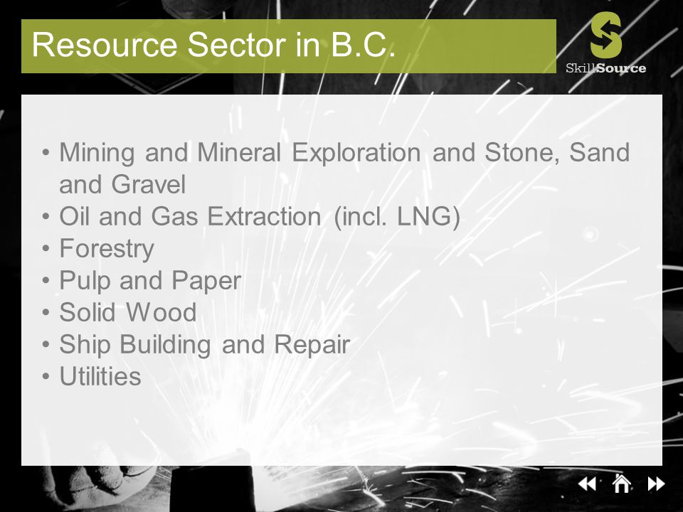 Resource Sector in B.C. Mining and Mineral Exploration and Stone, Sand and Gravel Oil and Gas Extraction (incl. LNG) Forestry Pulp and Paper Solid Woo