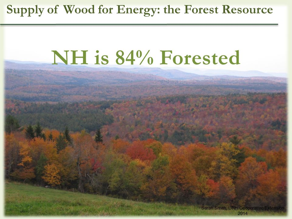 NH is 84% Forested Sarah Smith, UNH Cooperative Extension 2014 Supply of Wood for Energy: the Forest Resource