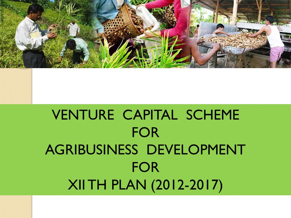 VENTURE CAPITAL SCHEME FOR AGRIBUSINESS DEVELOPMENT FOR XII TH PLAN (2012-2017)