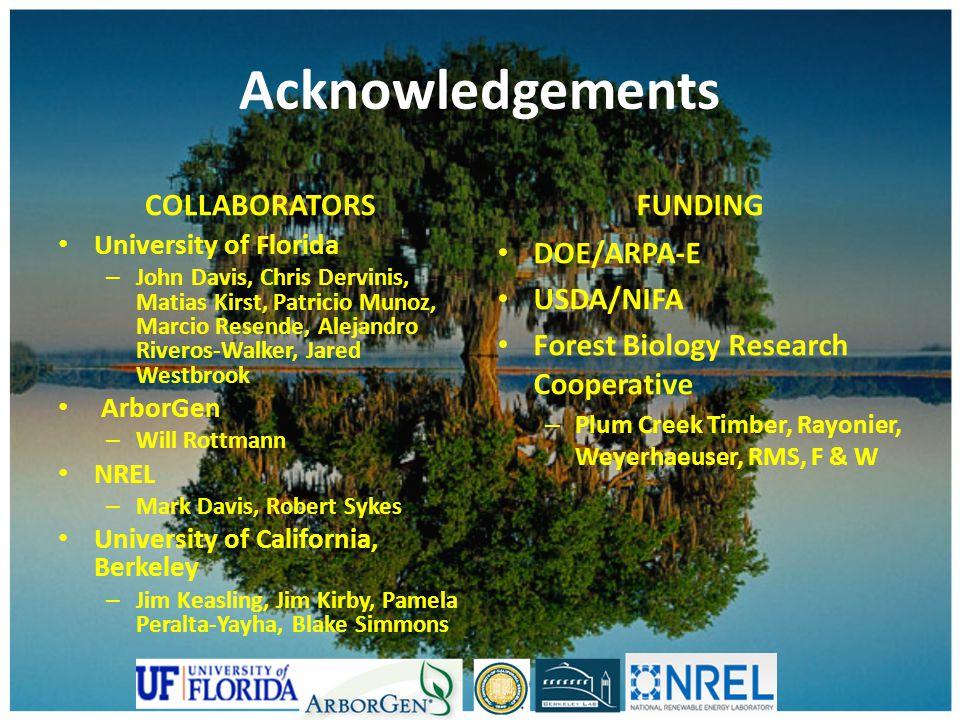 Acknowledgements COLLABORATORS University of Florida – John Davis, Chris Dervinis, Matias Kirst, Patricio Munoz, Marcio Resende, Alejandro Riveros-Wal