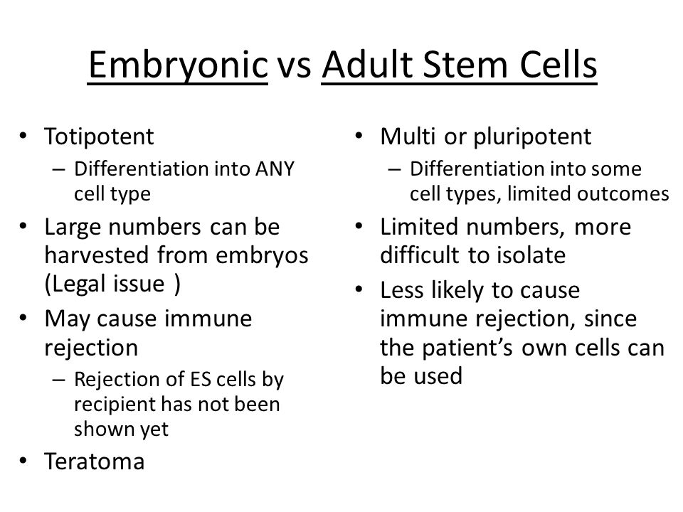 Embryonic vs Adult Stem Cells Totipotent – Differentiation into ANY cell type Large numbers can be harvested from embryos (Legal issue ) May cause immune rejection – Rejection of ES cells by recipient has not been shown yet Teratoma Multi or pluripotent – Differentiation into some cell types, limited outcomes Limited numbers, more difficult to isolate Less likely to cause immune rejection, since the patient's own cells can be used