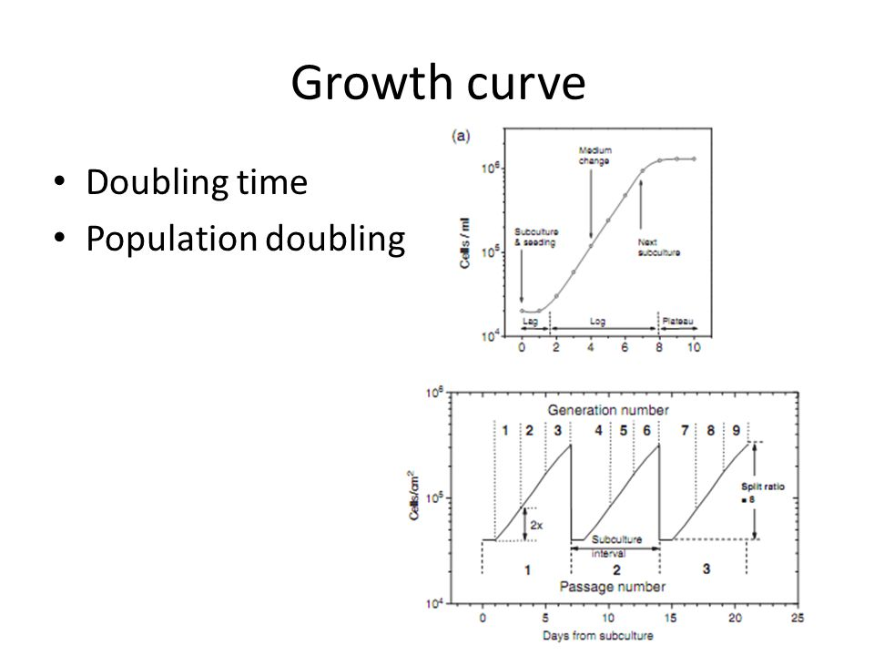 Growth curve Doubling time Population doubling