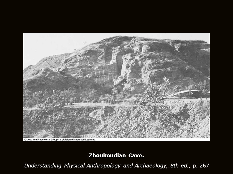 Zhoukoudian Cave. Understanding Physical Anthropology and Archaeology, 8th ed., p. 267