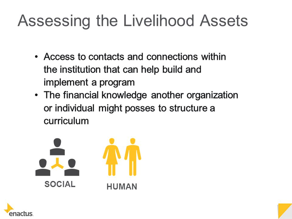 SOCIAL HUMAN Assessing the Livelihood Assets