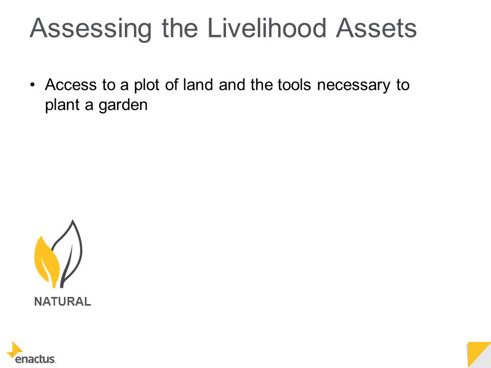 Assessing the Livelihood Assets NATURAL Access to a plot of land and the tools necessary to plant a garden