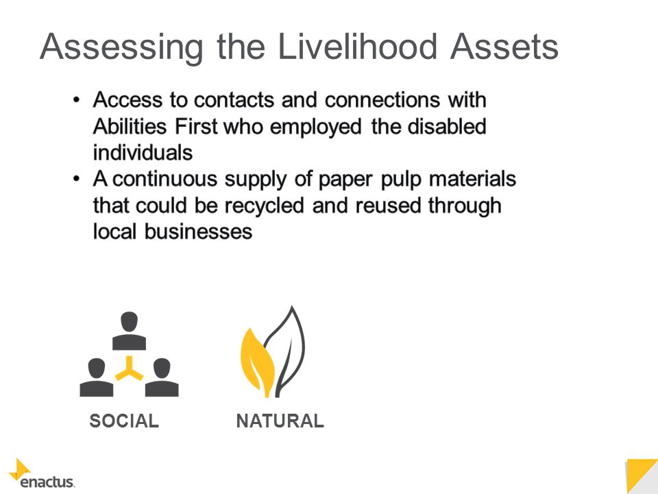 SOCIALNATURAL Assessing the Livelihood Assets