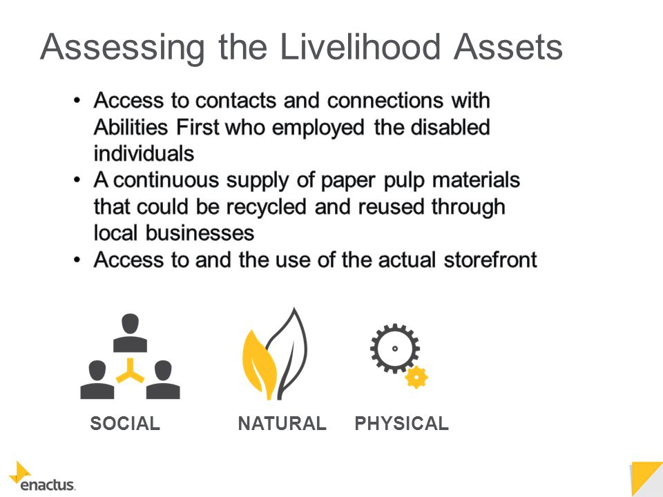 SOCIALPHYSICALNATURAL Assessing the Livelihood Assets