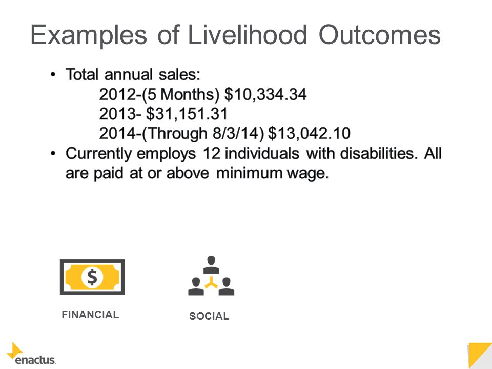 FINANCIAL SOCIAL Examples of Livelihood Outcomes