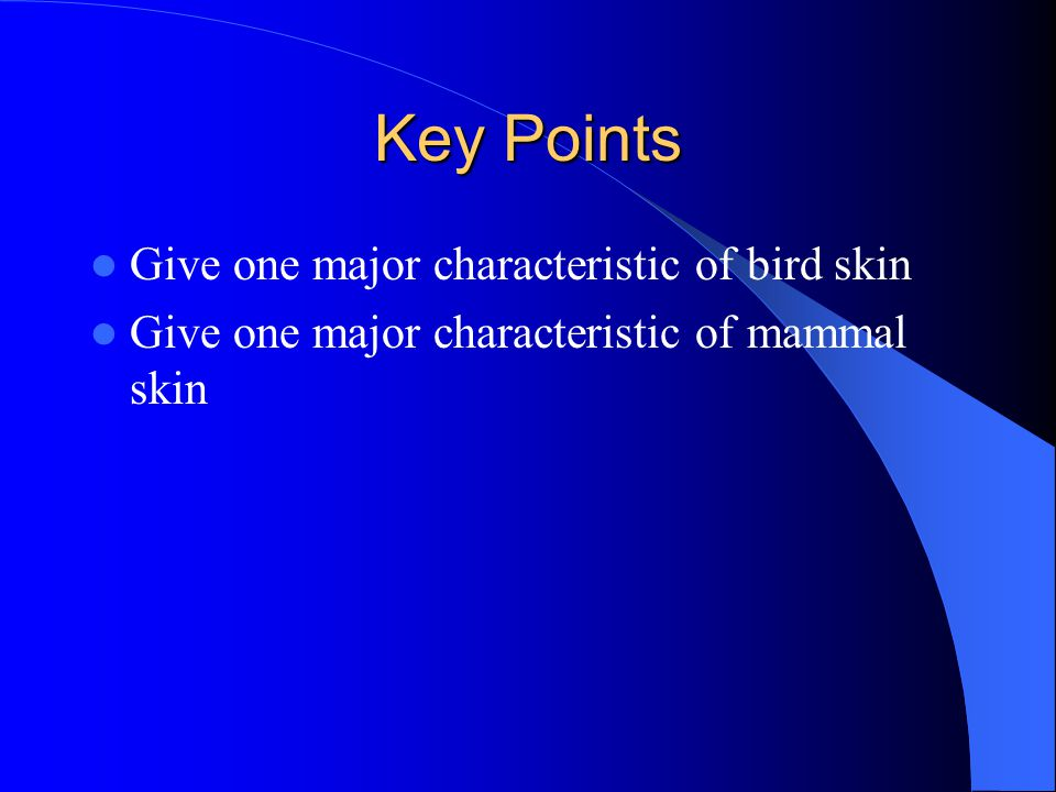 Key Points Give one major characteristic of bird skin Give one major characteristic of mammal skin