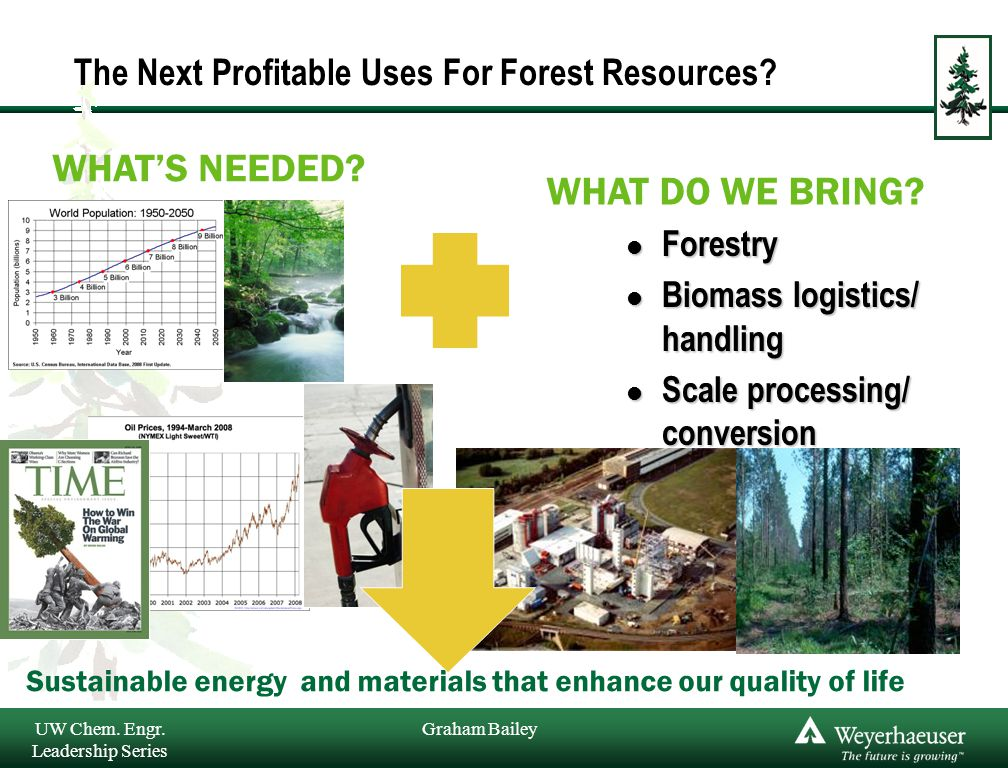 Graham Bailey The Next Profitable Uses For Forest Resources.