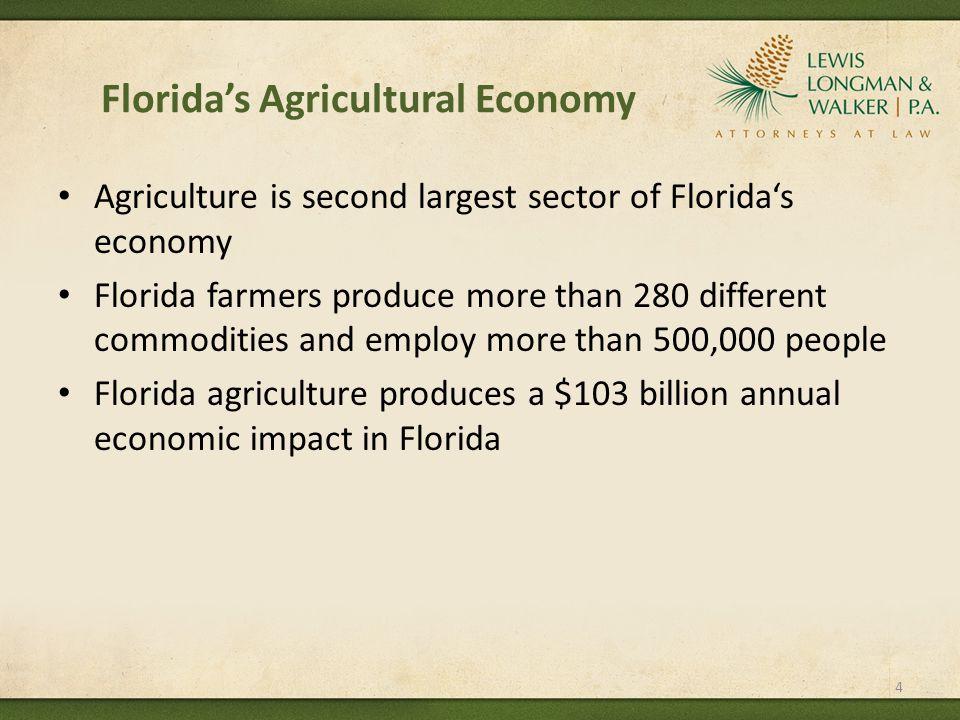 Florida's TMDL Process Sec.403.067, F.S.