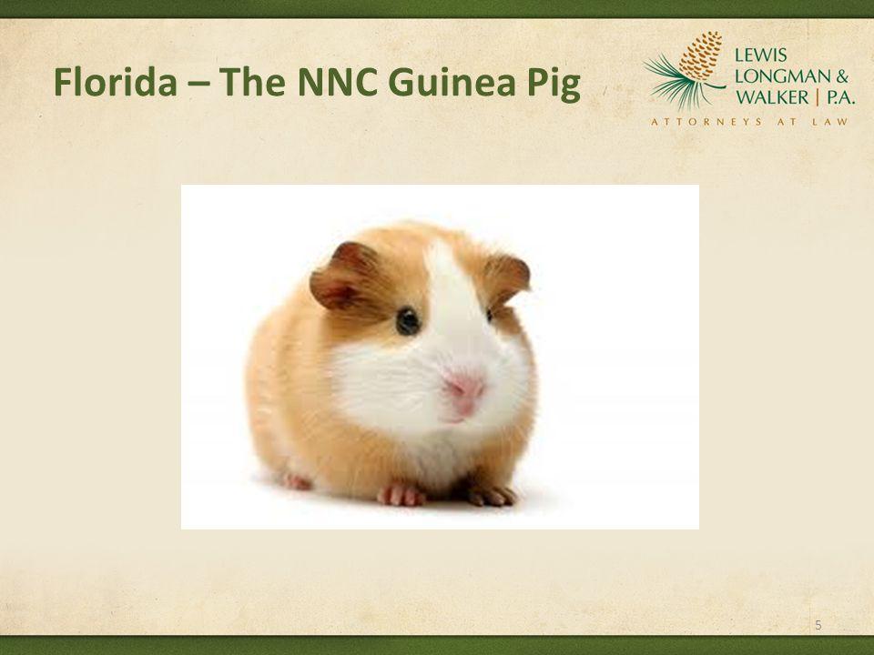 Florida – The NNC Guinea Pig 5