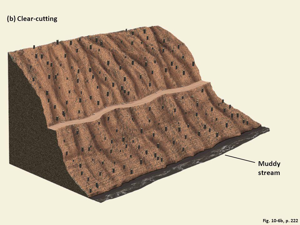 Fig. 10-6b, p. 222 (b) Clear-cutting Muddy stream