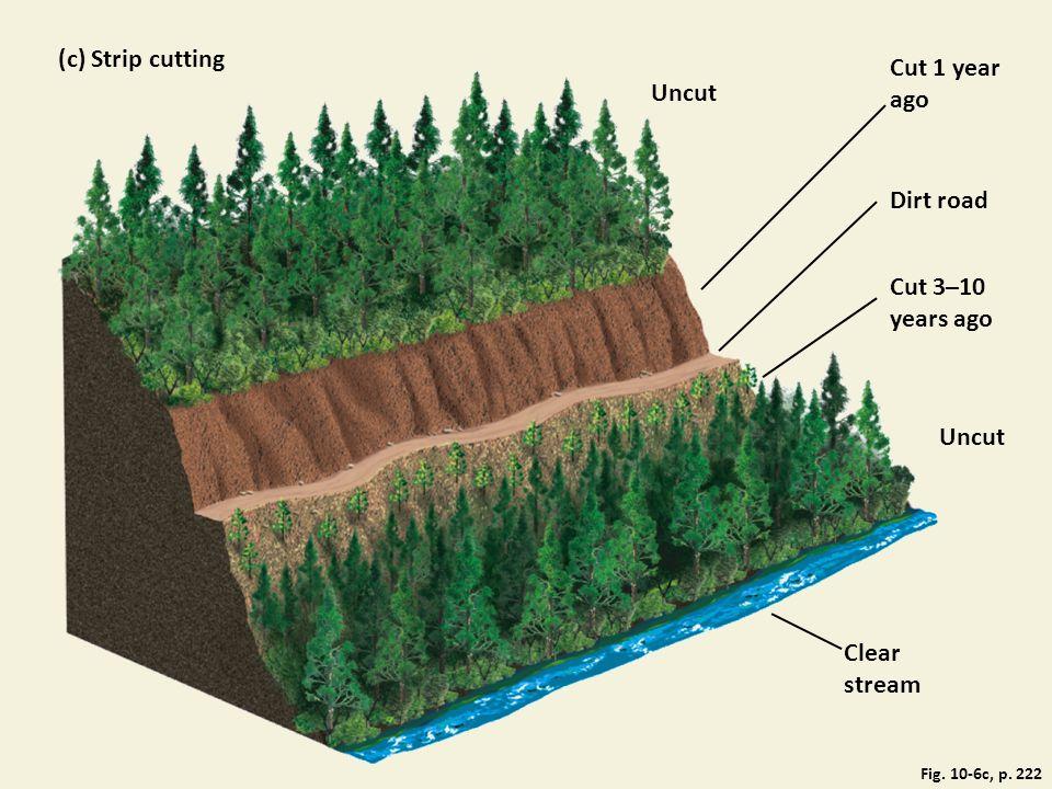 Fig. 10-6c, p. 222 (c) Strip cutting Uncut Cut 1 year ago Dirt road Cut 3–10 years ago Uncut Clear stream