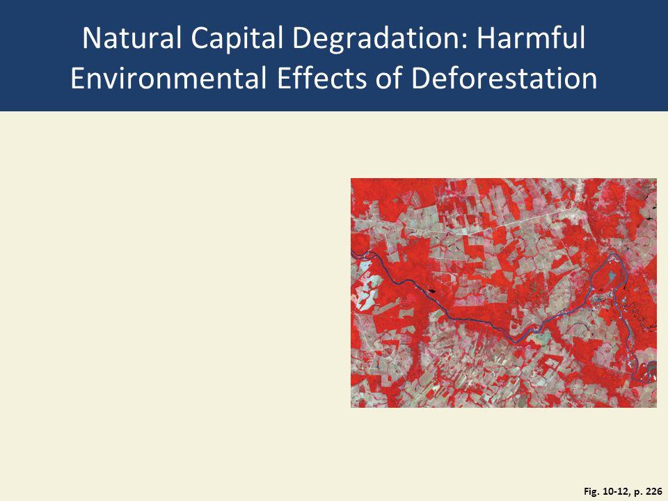 Natural Capital Degradation: Harmful Environmental Effects of Deforestation Fig. 10-12, p. 226