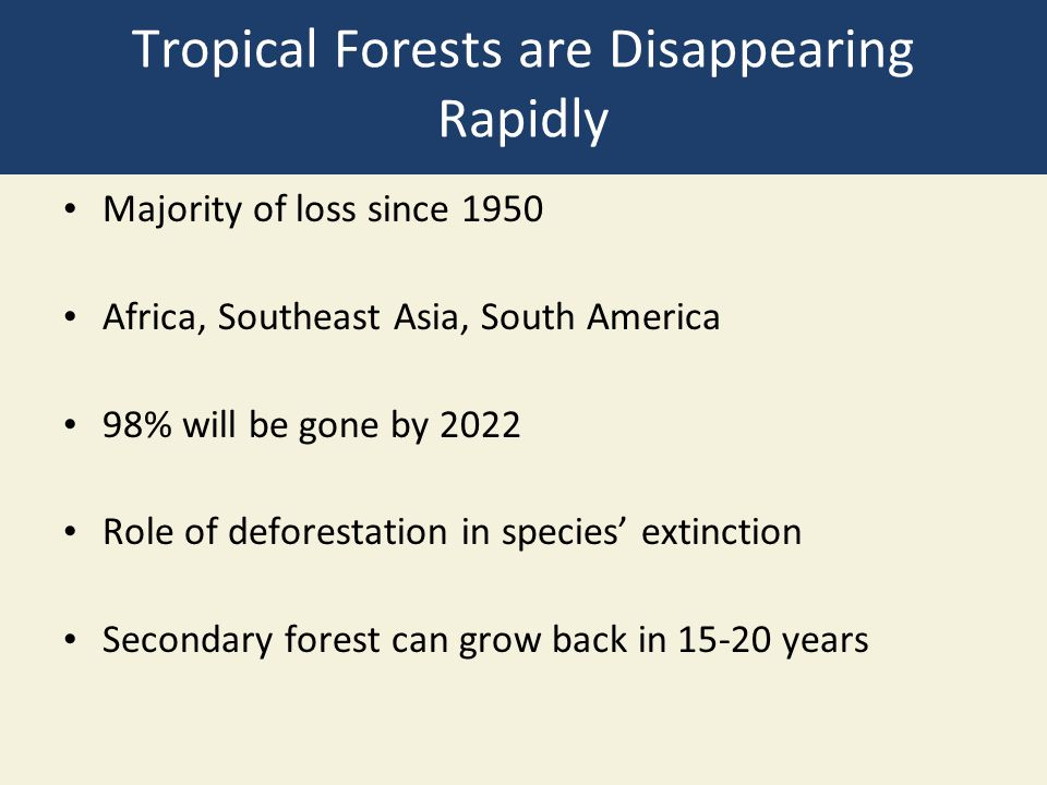 Tropical Forests are Disappearing Rapidly Majority of loss since 1950 Africa, Southeast Asia, South America 98% will be gone by 2022 Role of deforesta