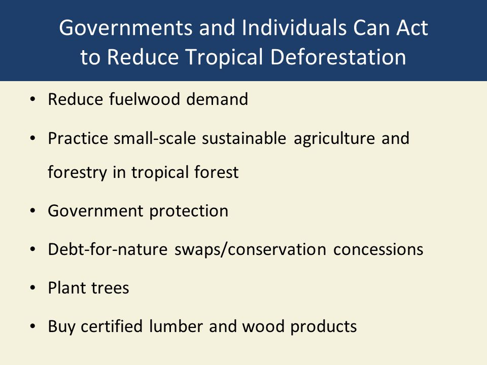 Governments and Individuals Can Act to Reduce Tropical Deforestation Reduce fuelwood demand Practice small-scale sustainable agriculture and forestry