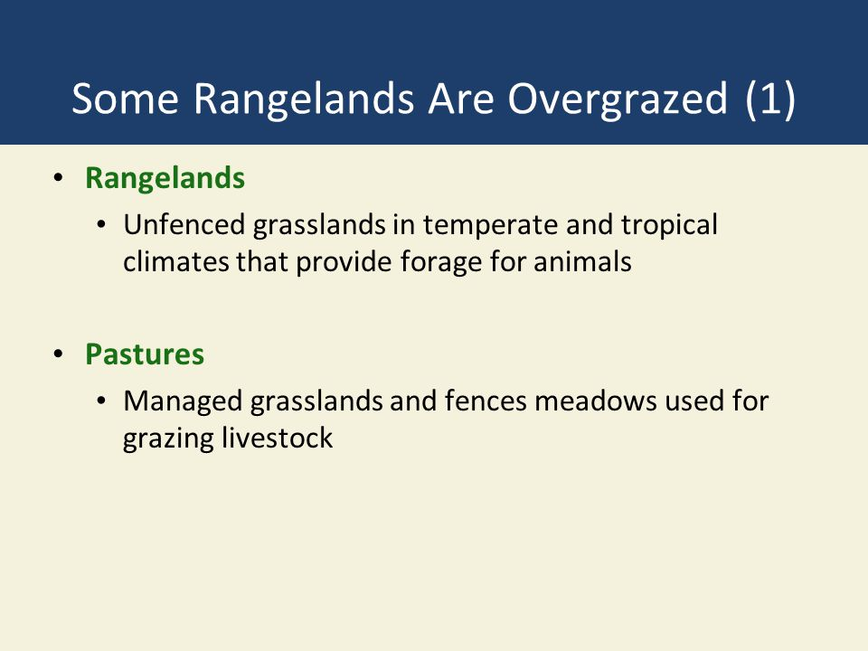 Some Rangelands Are Overgrazed (1) Rangelands Unfenced grasslands in temperate and tropical climates that provide forage for animals Pastures Managed