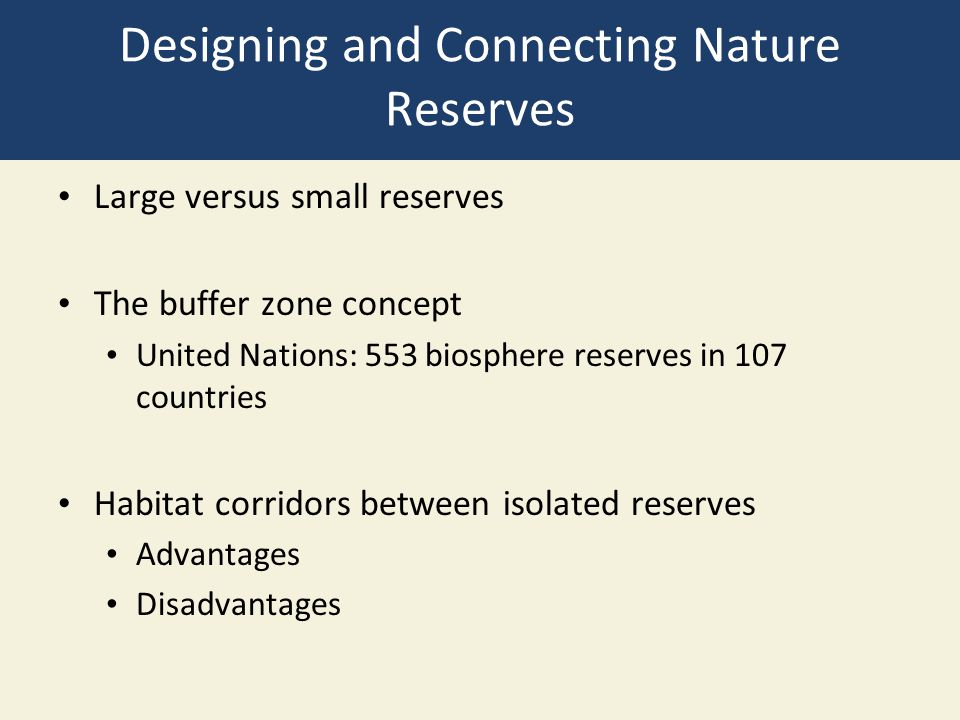 Designing and Connecting Nature Reserves Large versus small reserves The buffer zone concept United Nations: 553 biosphere reserves in 107 countries H
