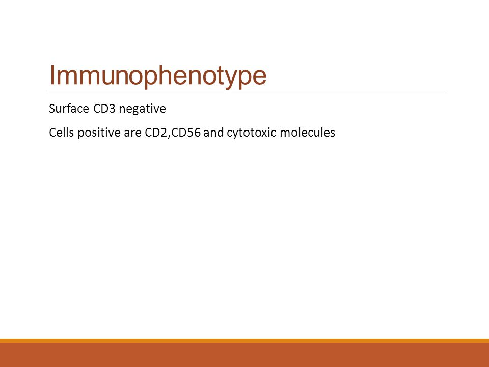 Immunophenotype Surface CD3 negative Cells positive are CD2,CD56 and cytotoxic molecules