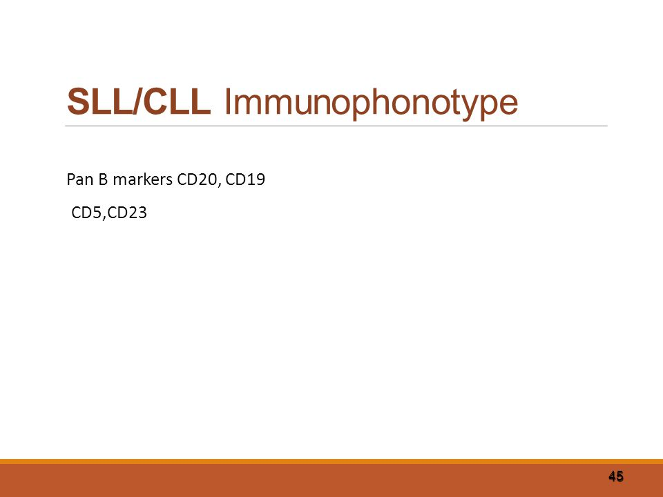 45 SLL/CLL Immunophonotype Pan B markers CD20, CD19 CD5,CD23
