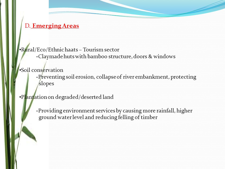 D. Emerging Areas Rural/Eco/Ethnic haats – Tourism sector -Claymade huts with bamboo structure, doors & windows Soil conservation -Preventing soil ero