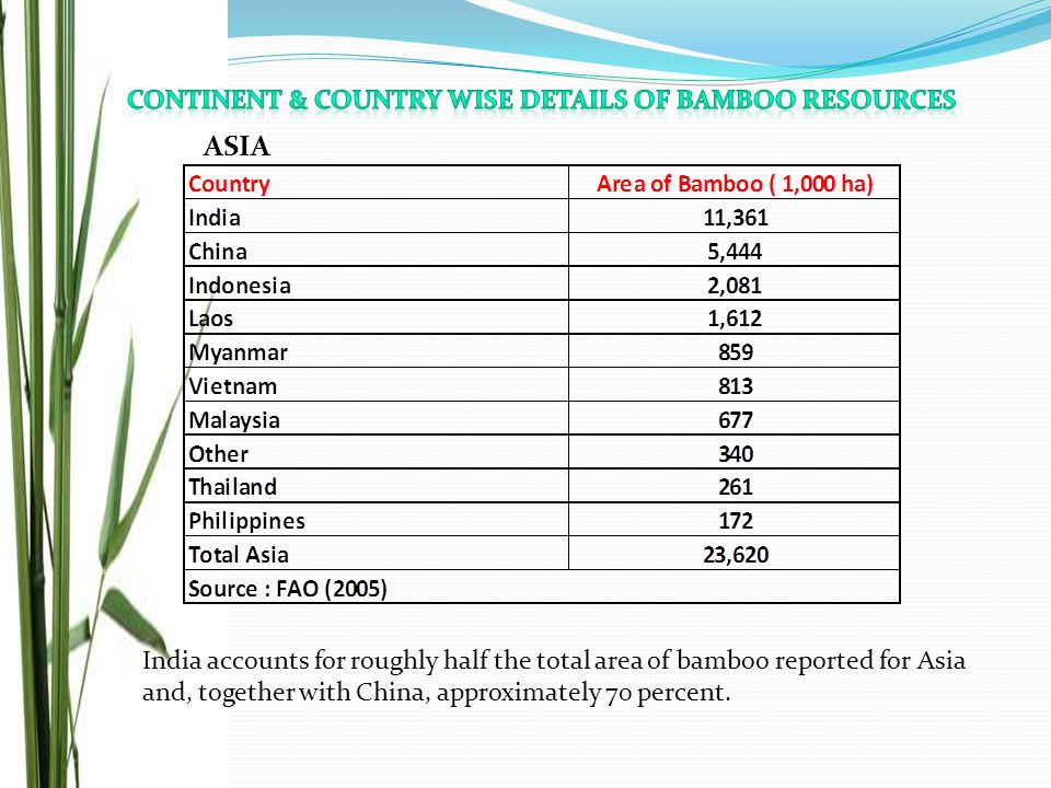 India accounts for roughly half the total area of bamboo reported for Asia and, together with China, approximately 70 percent. ASIA