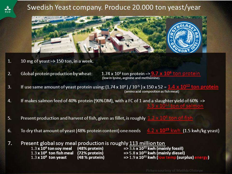 Picture courtesy of Matilda Olstorpe Swedish Yeast company.