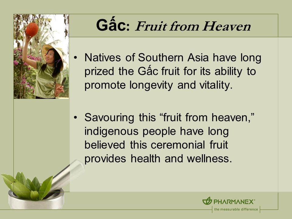 Gấc : Fruit from Heaven Natives of Southern Asia have long prized the Gấc fruit for its ability to promote longevity and vitality.