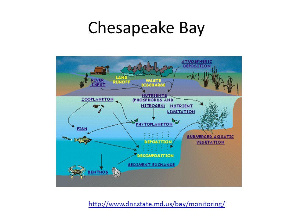 Chesapeake Bay http://www.dnr.state.md.us/bay/monitoring/