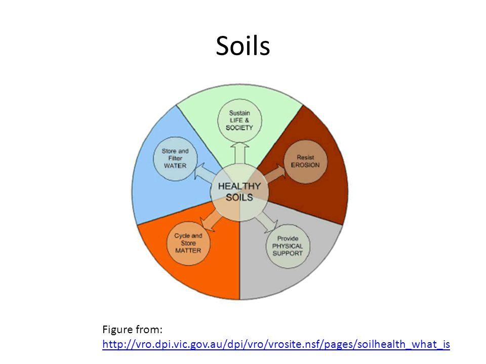 Soils Figure from: http://vro.dpi.vic.gov.au/dpi/vro/vrosite.nsf/pages/soilhealth_what_is http://vro.dpi.vic.gov.au/dpi/vro/vrosite.nsf/pages/soilheal
