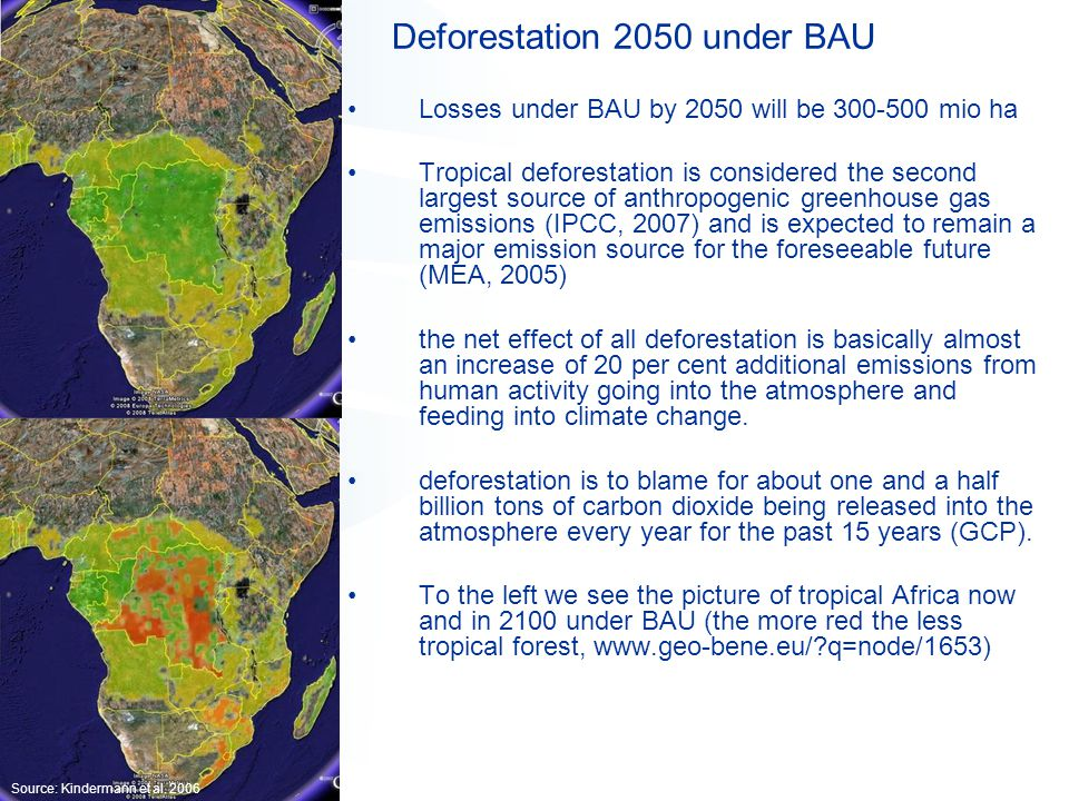 Deforestation 2050 under BAU Losses under BAU by 2050 will be 300-500 mio ha Tropical deforestation is considered the second largest source of anthropogenic greenhouse gas emissions (IPCC, 2007) and is expected to remain a major emission source for the foreseeable future (MEA, 2005) the net effect of all deforestation is basically almost an increase of 20 per cent additional emissions from human activity going into the atmosphere and feeding into climate change.
