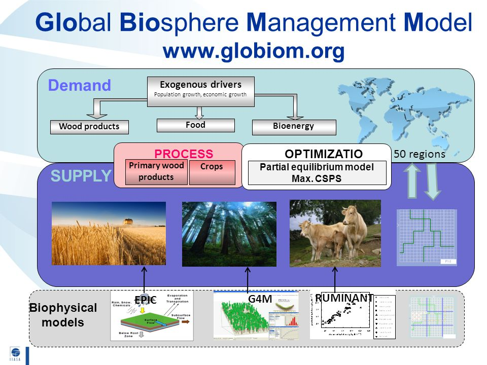 Global Biosphere Management Model www.globiom.org Demand Wood products Food Bioenergy G4M Exogenous drivers Population growth, economic growth Primary wood products SUPPLY PROCESS Biophysical models 50 regions EPIC RUMINANT Crops OPTIMIZATIO N Partial equilibrium model Max.