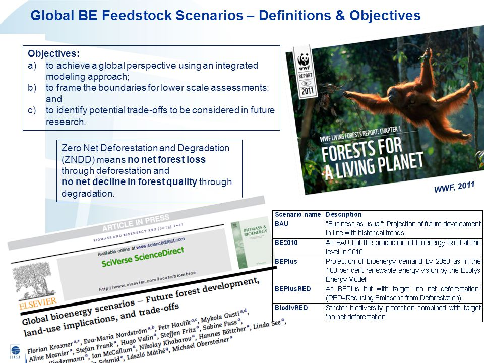 Global BE Feedstock Scenarios – Definitions & Objectives WWF, 2011 Objectives: a)to achieve a global perspective using an integrated modeling approach