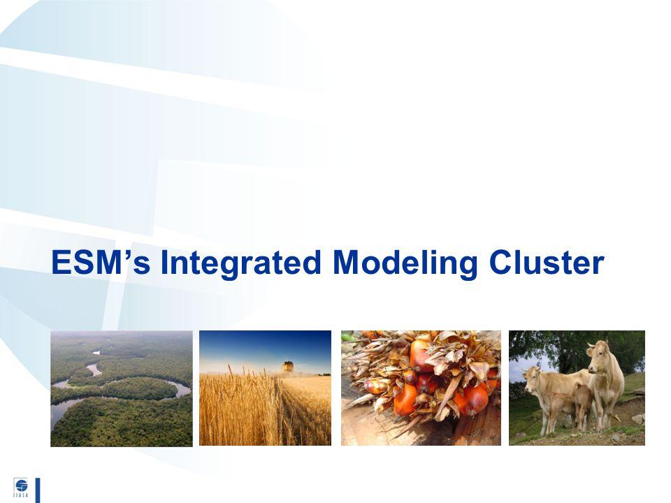 ESM's Integrated Modeling Cluster