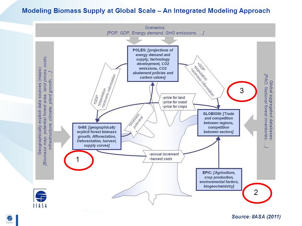 Modeling Biomass Supply at Global Scale – An Integrated Modeling Approach Source: IIASA (2011) 1 3 2