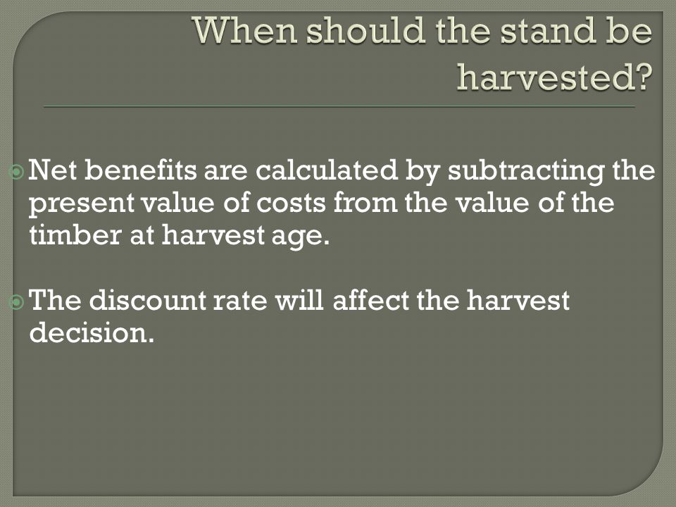  Net benefits are calculated by subtracting the present value of costs from the value of the timber at harvest age.