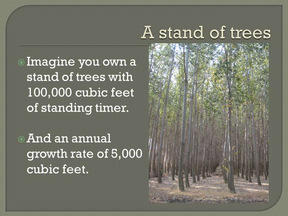  Imagine you own a stand of trees with 100,000 cubic feet of standing timer.