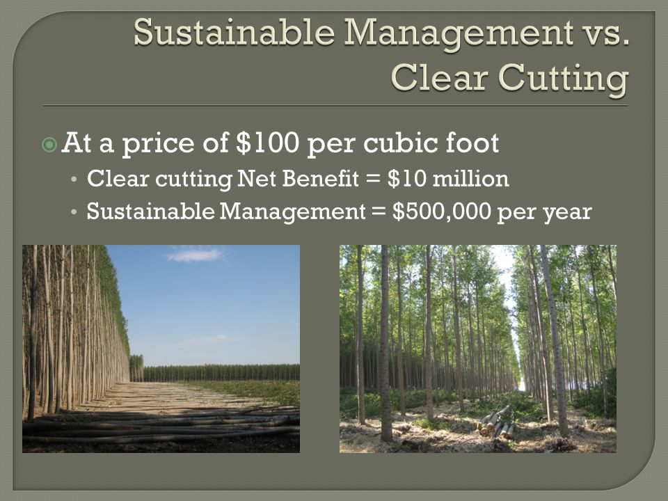  At a price of $100 per cubic foot Clear cutting Net Benefit = $10 million Sustainable Management = $500,000 per year