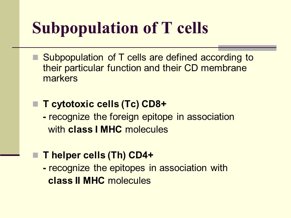 Subpopulation of T cells Subpopulation of T cells are defined according to their particular function and their CD membrane markers T cytotoxic cells (