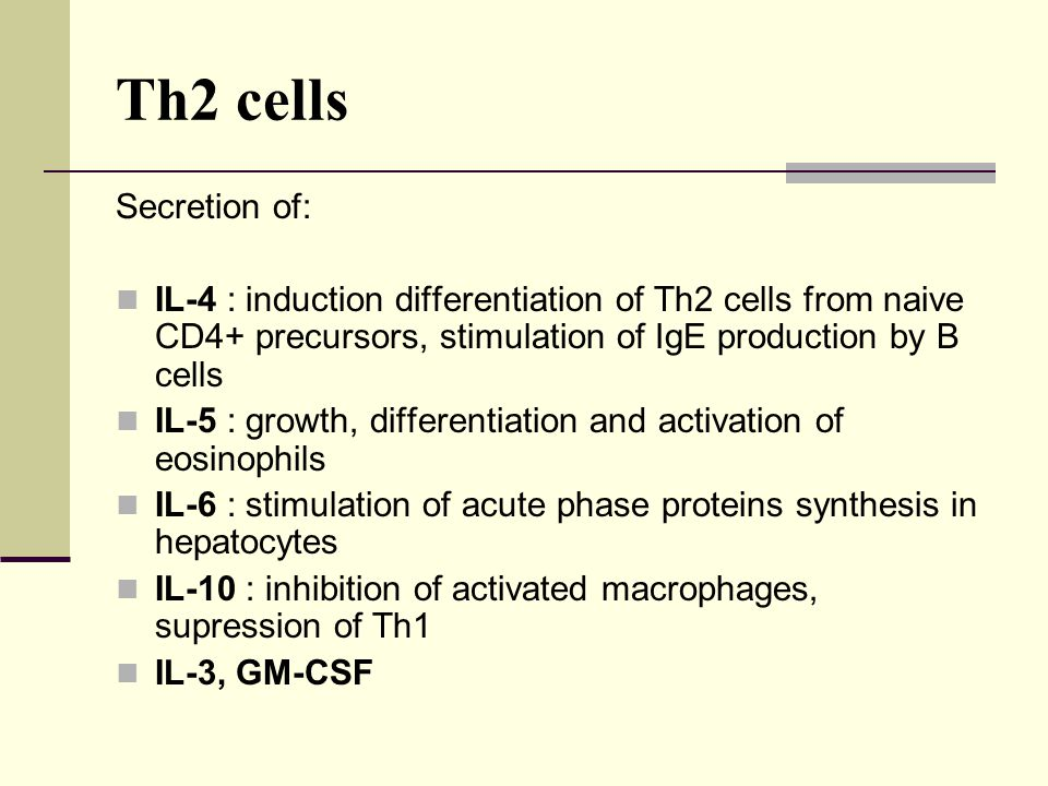Th2 cells Secretion of: IL-4 : induction differentiation of Th2 cells from naive CD4+ precursors, stimulation of IgE production by B cells IL-5 : grow