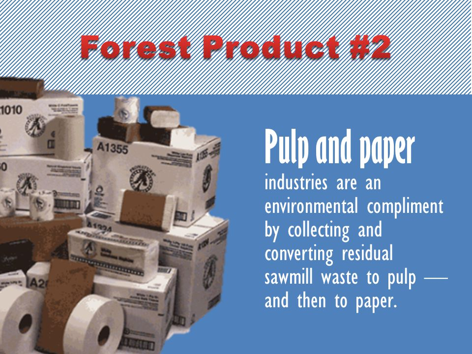 Pulp and paper industries are an environmental compliment by collecting and converting residual sawmill waste to pulp — and then to paper.