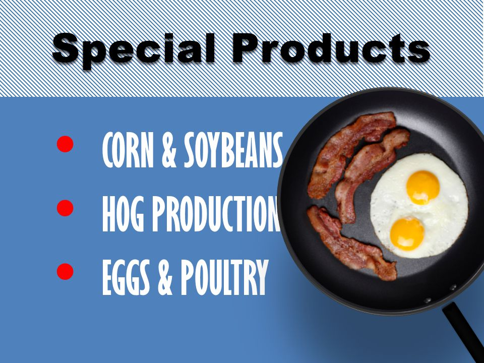 CORN & SOYBEANS HOG PRODUCTION EGGS & POULTRY Special Products