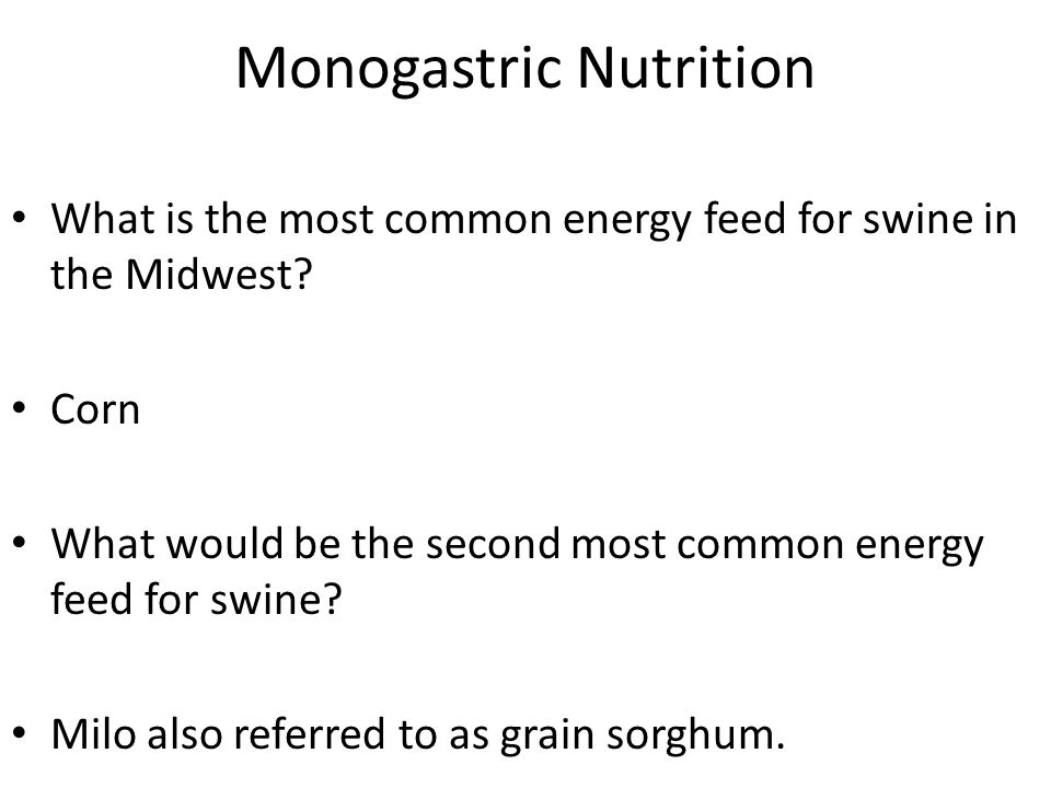 Monogastric Nutrition What is the most common energy feed for swine in the Midwest? Corn What would be the second most common energy feed for swine? M