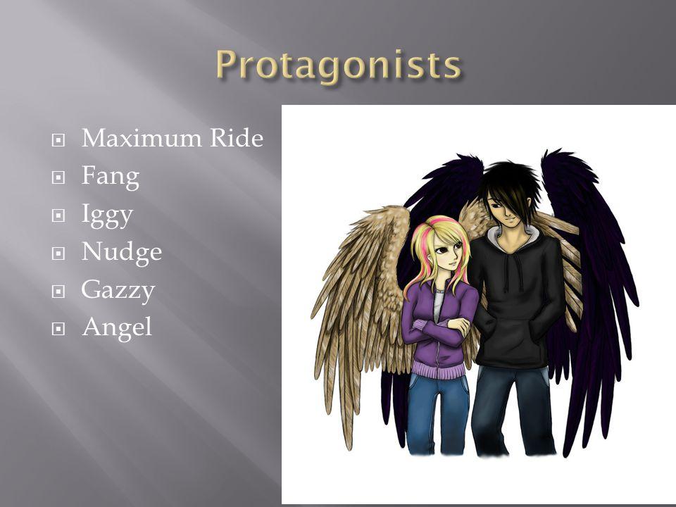  Maximum Ride  Fang  Iggy  Nudge  Gazzy  Angel