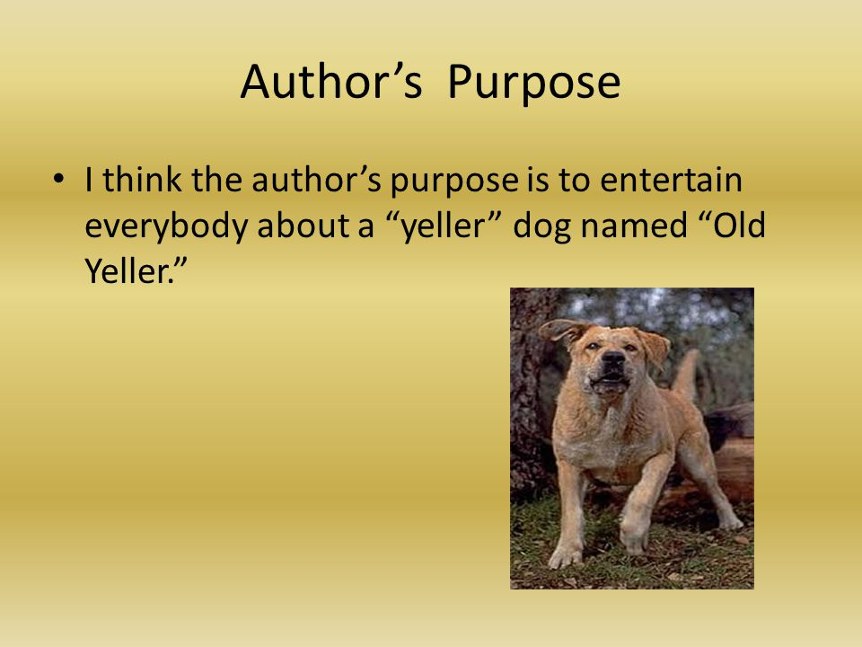 """Author's Purpose I think the author's purpose is to entertain everybody about a """"yeller"""" dog named """"Old Yeller."""""""