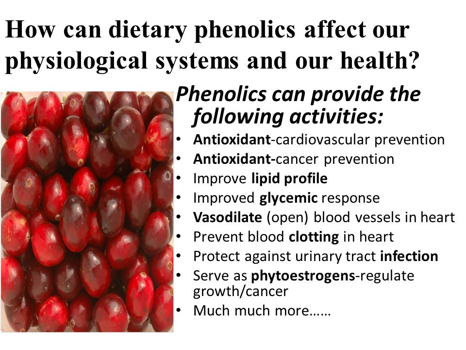 How can dietary phenolics affect our physiological systems and our health.